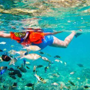 Snorkeling trip at Gili island
