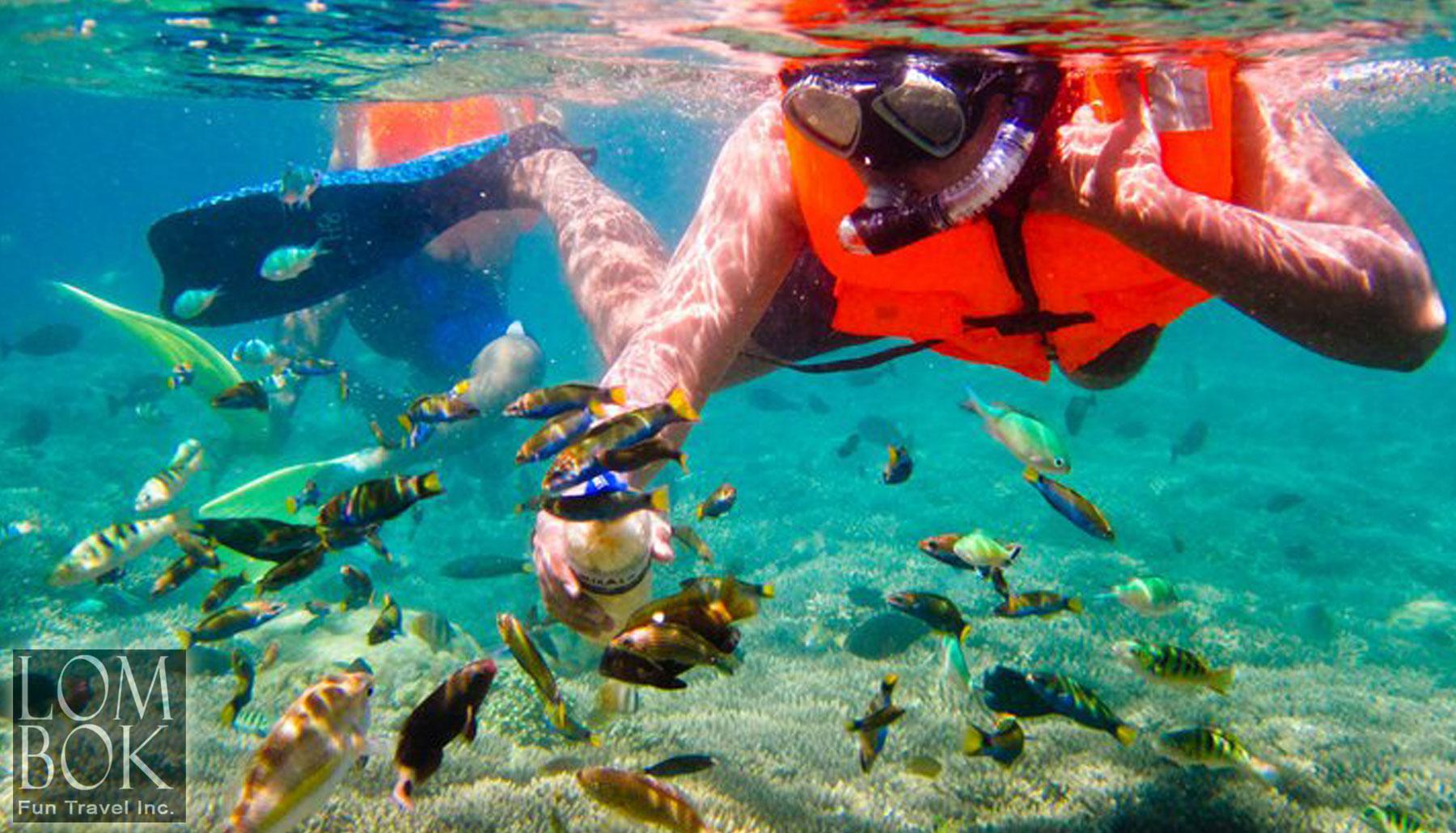 snorkeling-trip-to-gili-nanggu
