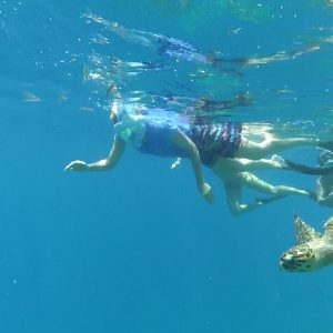 snorkeling with turtle
