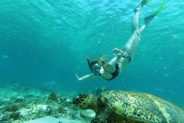 snorkeling with turtle in gili trawangan