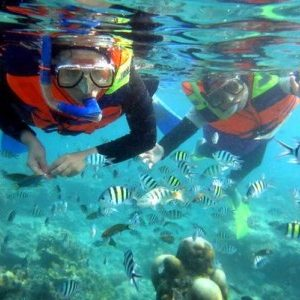 snorkeling-di-gili-trawangan